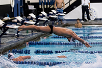 Men's Swimming/Diving