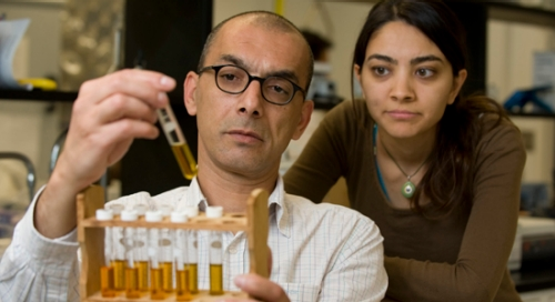 Dr. Metin Duran, Associate Professor of Civil and Environmental Engineering, and Yasemin Dilsad Yilmazel in the EMB Laboratory