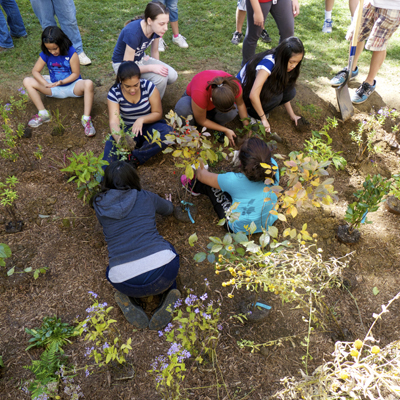 Villanova's St Thomas Day of Service Grows Greener