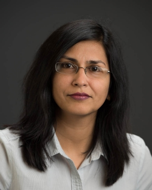 Research Professor Fauzia Ahmad, PhD, Director of CAC Radar Imaging Laboratory