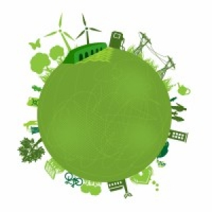 Sustainability Studies Grow in Popularity