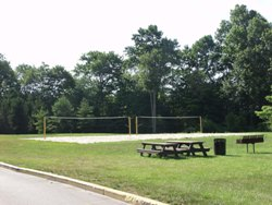 Volleyball Courts / Picnic Area
