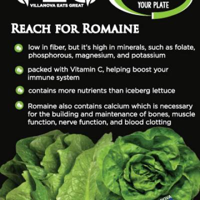 Reach for Romaine  low in fiber, but it's high in minerals, such as folate,phosphorous, magnesium, and potassium packed with Vitamin C, helping boost yourimmune system contains more nutrients than iceberg lettuce Romaine also contains calcium which is necessaryfor the building and maintenance of bones, musclefunction, nerve function, and blood clotting