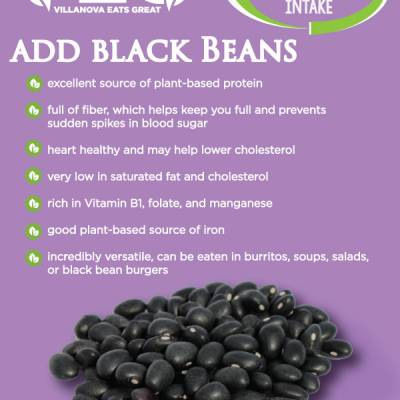 add black Beans excellent source of plant-based protein full of fiber, which helps keep you full and prevents sudden spikes in blood sugar heart healthy and may help lower cholesterol  very low in saturated fat and cholesterol rich in Vitamin B1, folate, and manganese good plant-based source of iron incredibly versatile, can be eaten in burritos, soups, salads, or black bean burgers