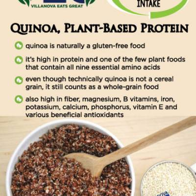 Quinoa, Plant-Based Protein  quinoa is naturally a gluten-free food it's high in protein and one of the few plant foodsthat contain all nine essential amino acids even though technically quinoa is not a cerealgrain, it still counts as a whole-grain food also high in fiber, magnesium, B vitamins, iron,potassium, calcium, phosphorus, vitamin E andvarious beneficial antioxidants