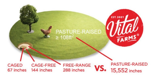 Caged = 67 inches, Cage-Free = 144 inches, Free-Range = 288 inches, Pasture-Raised = 15,552 inches