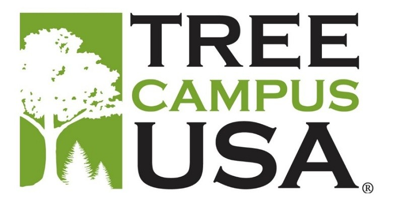 Tree Campus USA logo, a white silhouette of a deciduous tree and two coniferous trees on a green background, next to large black and green text that reads 'Tree Campus USA'