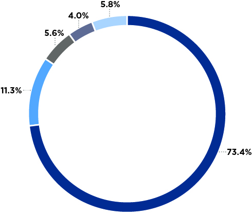 Pie chart showing revenue sources and percentages
