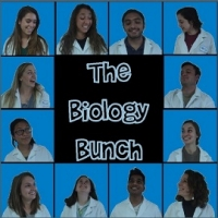 Biology bunch